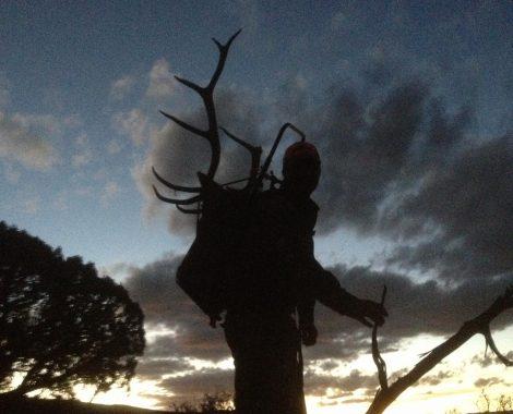 Elk Pack